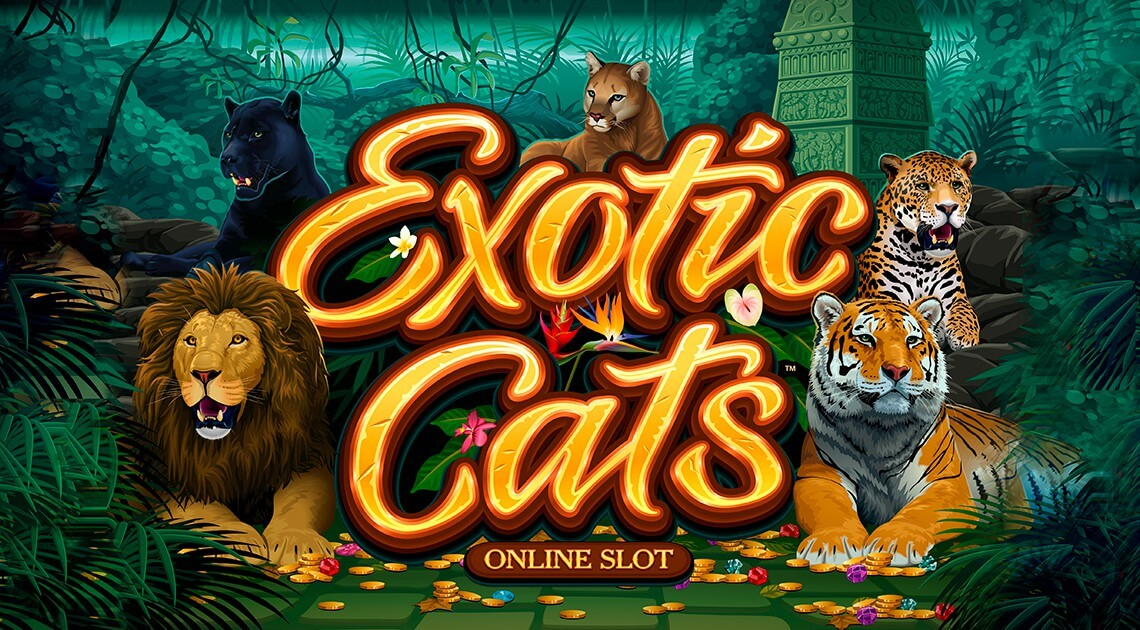 Fascinating Novelty Exotic Cats From Microgaming