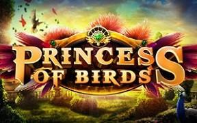 princess of birds