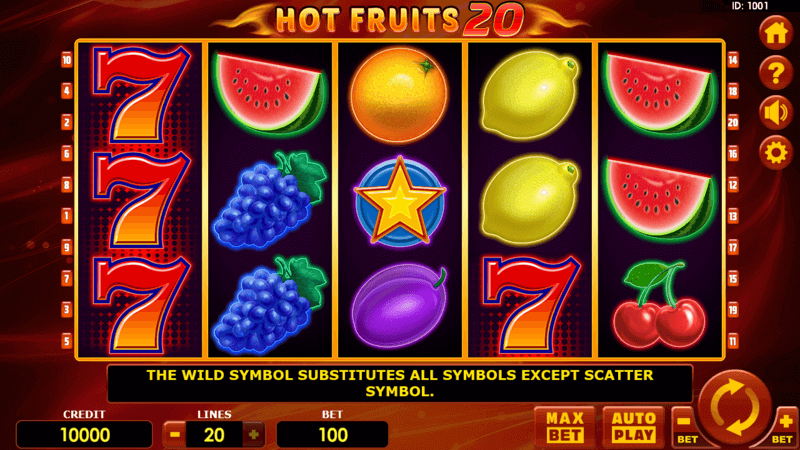 Hot fruits 20 by Amatic - Slotegrator